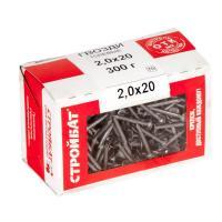 Гвозди толевые 2,0x20 (0,3 кг)
