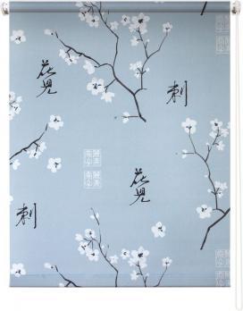 Рулонная штора 60х175 Япония (Серый)